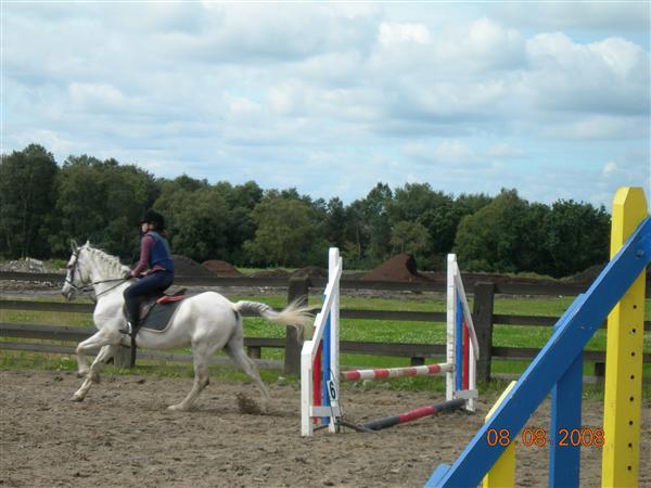 Pony Summer Camp 2008